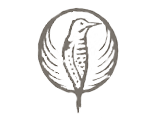 Audubon Osprey Nest