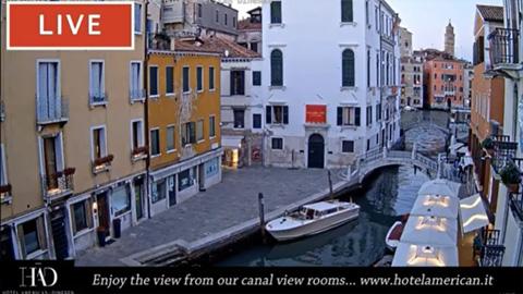 Venice Live